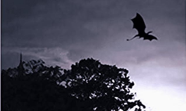 Le cronache di Giada – l'altopiano dei draghi
